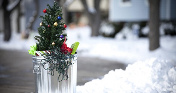 What To Do With Your Christmas Tree After Christmas