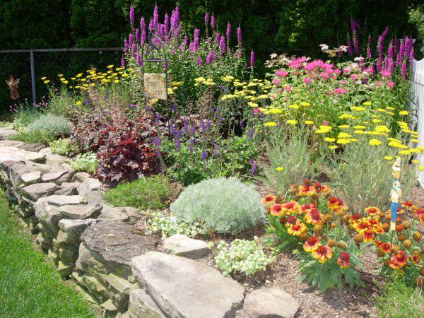 Planning a perennial garden - Binley Florist & Garden Center